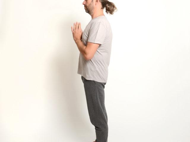 01 Namaste-Sammlung-im-inneren-Herzen-Sonnengruß-AUrdhva-Vrksasana-nach-oben-gerichtete-Baumhaltung