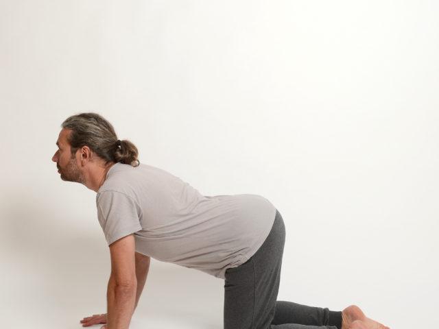 02 Katze-cakravakasana-1-Yoga-Holzwickede