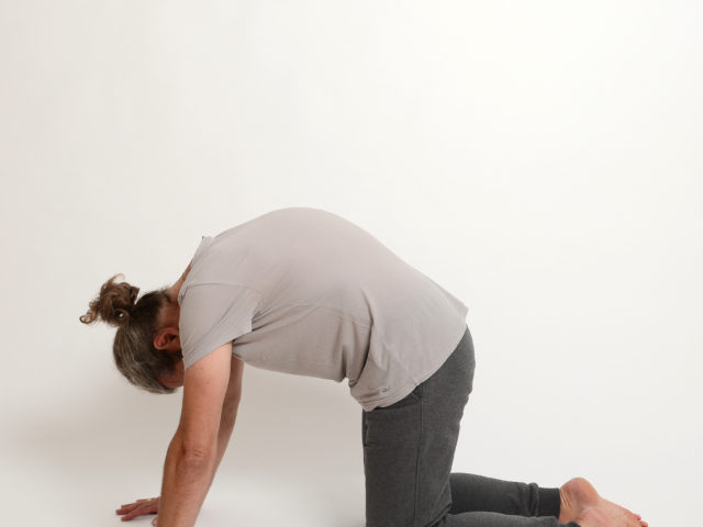 03 Katze-cakravakasana-2-Yoga-Holzwickede