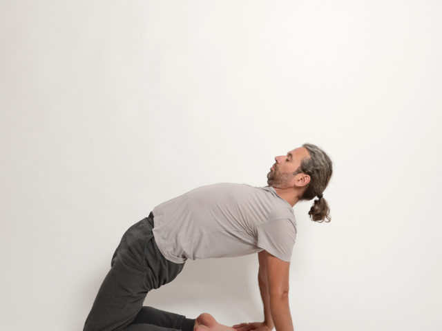 05 Ushtrasana-Kamel-Haltung-Yoga-Unna-Kamen